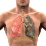 How Fast Does Your Body Recover After Quitting Smoking